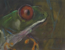 Frog by Terry Thirion