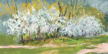 Cloudy Day Blossoms by artist Terry Thirion